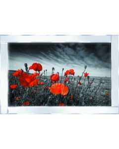 Red Flowers on Mirrored Frame