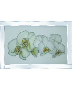 White Orchid on Mirrored Frame