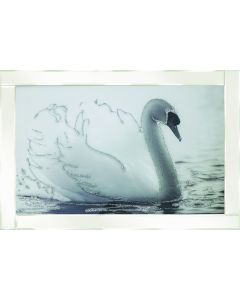 White Swan on White Frame