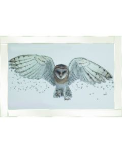 White Owl on White Frame